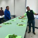 Plant Materials Quiz